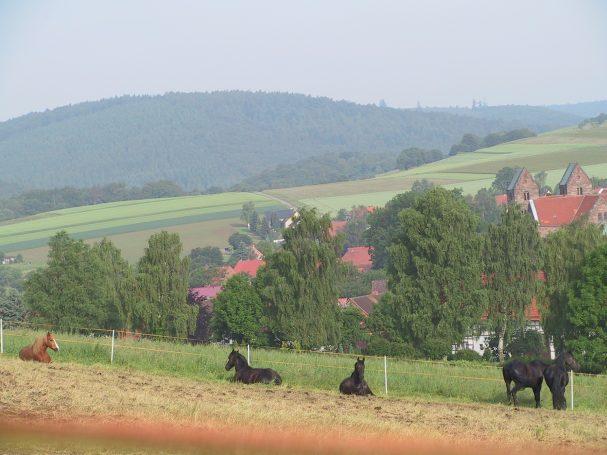 Blick vom Weperfuss über Fredelsloh in den Solling_6.02_© TIF